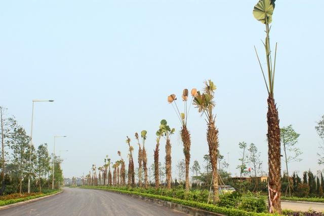 Khu đô thị Nam An Khánh đang được Sudico hợp lực với các đối tác lớn hoàn thiện cơ sở hạ tầng nhằm đem lại môi trường sống đẳng cấp.