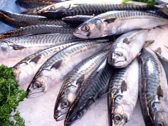 Cá biển là thực phẩm giàu i - ốt giúp phòng ngừa u nang buồng trứng hiệu quả