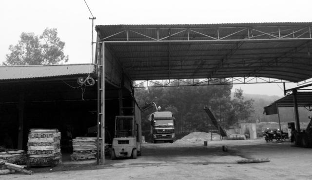 Cơ sở băm dăm gỗ không phép tại huyện Triệu Sơn. Ảnh: N.Hưng