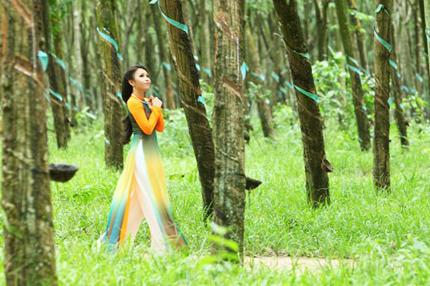 Cẩm Ly tha thướt áo dài giữa rừng cao su 7