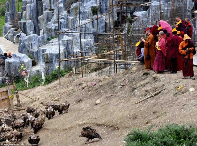 Hãi hùng chứng kiến tục thiên táng bằng chim kền kền