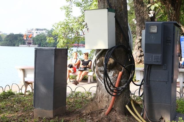 Hệ thống dây điện, dây cáp loằng ngoằngnằm ngay bên bờ hồ.