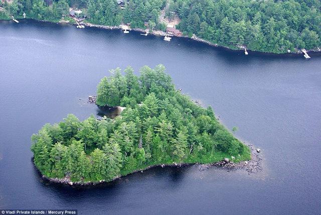 Hòn đảo có hình trái tim và có cây cối mọc um tùm.