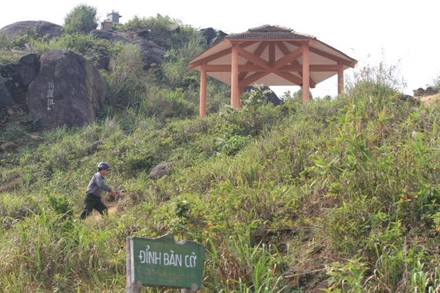 Đỉnh Bàn Cờ - Bán đảo Sơn Trà (Đà Nẵng), nơi con khỉ xuất hiện và tấn công người dân, du khách. Ảnh Đức Hoàng