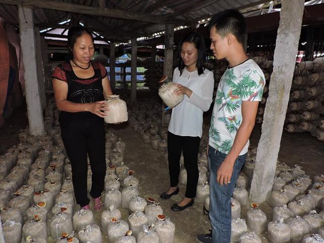 Người phụ nữ nghèo thành chủ trang trại nấm linh chi bạc tỷ