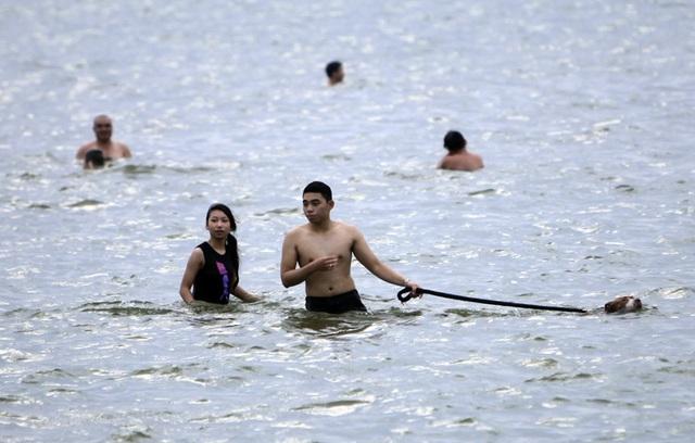 Người, thú cưng, giải nhiệt, Hồ Tây