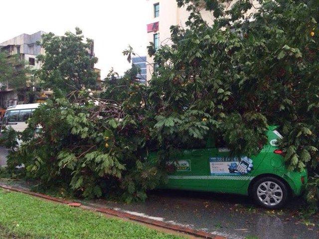 Một chiếc taxi bị cây đè trúng, chưa rõ tình trạng tài xế. Ảnh: Minh Nhật