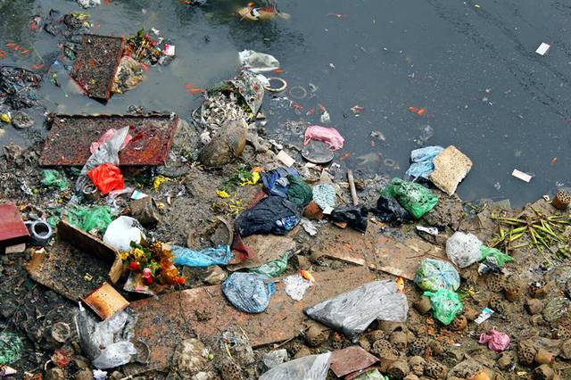 Cũng không thể gặp Táo quân được vì chết vì nước sông ô nhiễm hoặc nằm vắt vẻo trên đống rác