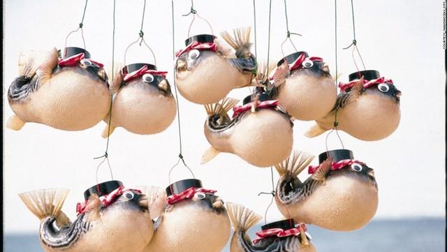 Những chiếc đèn lồng làm bàng da cá nóc thật treo bên ngoài một nhà hàng tại . Ảnh: CNN.