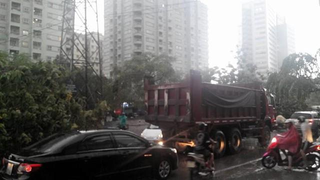 Các phương tiện lưu thông trên phố Tam Trinh không có lối đi do cây đổ chắn đường