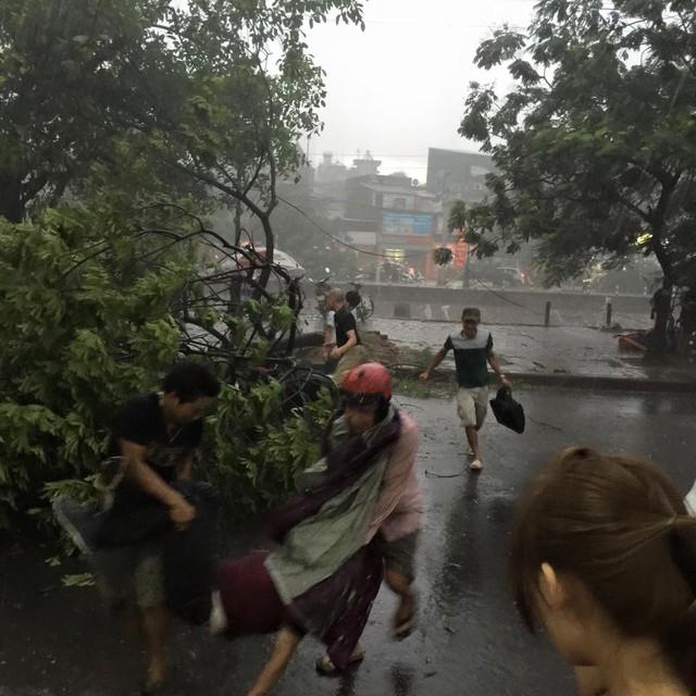 Một người bị thương do cây đổ đè lên xe ở phố Kim Ngưu