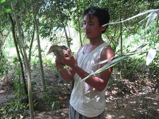 Suốt nhiều năm qua, anh Ngân luôn cẩn thận chăm sóc vườn cò của gia đình.