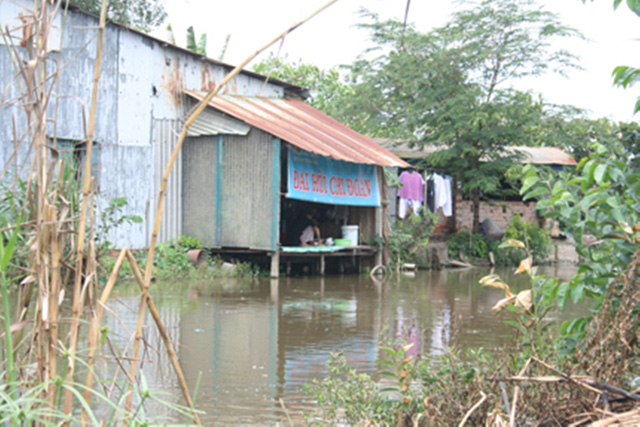 Hộ gia đình bà Nguyễn Thị Hải (ấp 1, xã Lê Minh Xuân, huyện Bình Chánh,TPHCM) đến nay đã có nước sạch để dùng, không còn phải sử dụng nguồn nước nhiễm khuẩn. Ảnh:Đỗ Bá