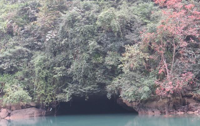 Động Quả Vàng được đánh giá là động đẹp nhất quần đảo Cát Bà hiện nay
