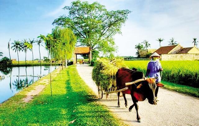 Cổng làng, đường làng với bao hoài niệm về một thời thơ ấu.          Ảnh: Thế Long