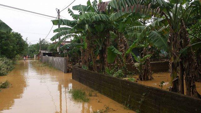 Nước lũ về nhanh làm ngập 2.033 nhà dân tại huyện Cam Lộ. Ảnh: L.C