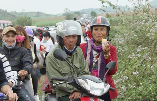 Lượng du khách tìm về cánh đồng hoa này quá lớn khiến đường mòn Hồ Chí Minh (đoạn qua Nghệ An) bị ùn tắc kéo dài hàng km. Nhiều du khách phải vất vả gần cả ngày mới bò tới địa điểm ngắm hoa.