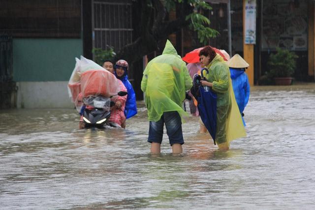 Trong lúc đó, một số khách phải vận chuyển đồ đoàn đi nơi khác vì một số khách sạn ở phố cổ bị ngập nước, không đi lại được