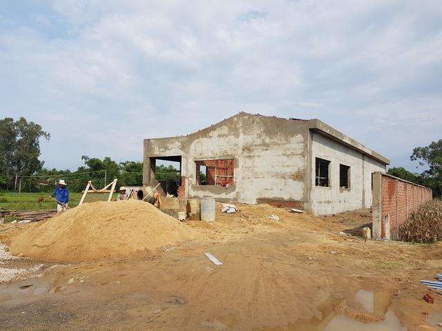 Nhà xưởng của Công ty TNHH MTV Da Nang Plastic xây không phép. Ảnh: Đ.H