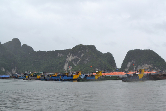 Hàng trăm tàu, thuyền đã tìm nơi trú tránh tại các khu neo đậu