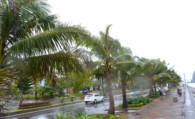 Gió vẫn giật mạnh và mưa to ở Quảng Ninh