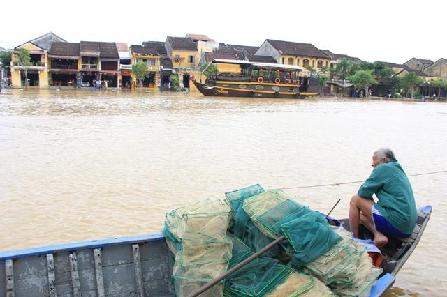 Theo một lão ngư làm nghề chài lưới trên sông Hoài, sông Đế Võng, mỗi mùa nước lũ về mang theo nhiều tôm cá, đặc biệt là cá lệch