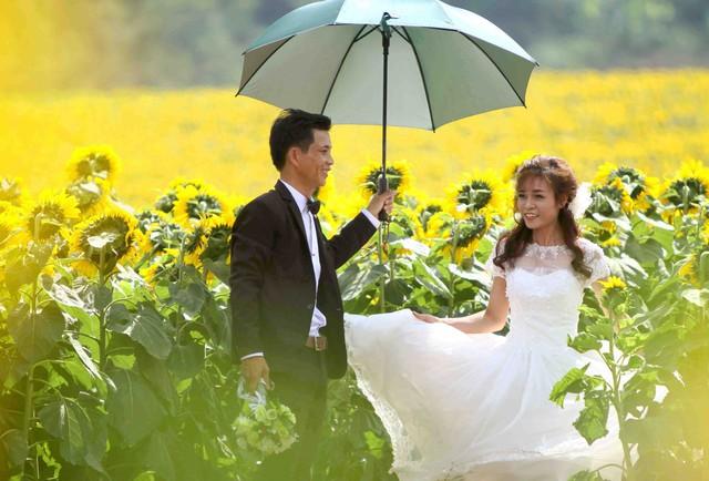 Đây cũng là một địa điểm lý tưởng được nhiều cặp đôi chọn làm nơi lưu giữ lại những khoảnh khắc ngày cưới của cuộc đời mình thời gian gần đây.