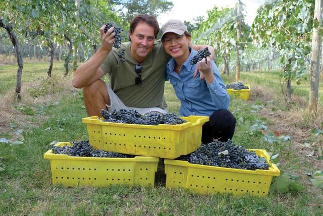 Hoa hậu Ngọc Khánh và chồng đang quản lý trang trại sản xuất rượu vang của gia đình chồng