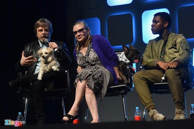 Carrie Fisher bên cạnh Mark Hamill và John Boyega tại sự kiện Star Wars Celebration 2016 tại London, Anh hồi mùa hè. Họ đến để chia sẻ về Star Wars VIII, bộ phim dự kiến ra mắt cuối năm 2017. Ảnh: Tiến Tuấn.