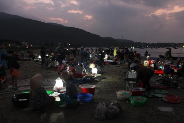 Khi mặt trời chưa lên, bên bờ biển Đà Nẵng, hàng trăm người tấp nập mua bán hải sản, trong đó ruốc tươi được nhiều người mua bán nhất...