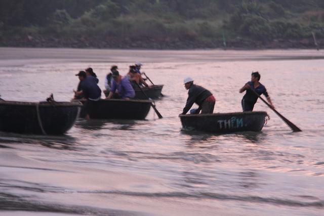 Nhiều thuyền thúng chở ruốc đánh bắt gần bờ biển vào đất liền để kịp cho thương lái mua, chở đi khắp nơi