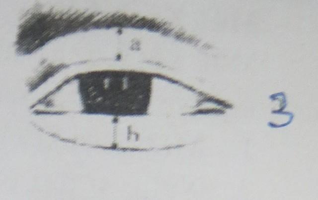 Người có âm dương nhãn có năng khiếu về khoa học huyền bí, có giác quan thứ  6 rất mạnh, nhìn thấy được những điều của thế giới huyền bí (Hình 3).