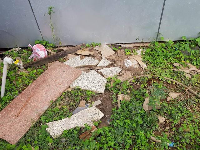 Gạch ốp tường bong tróc, rơi xuống đất vỡ tan đe dọa đến sự an toàn của những người làm việc hoặc đến làm việc tại tòa nhà.