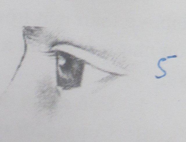 Mắt đổ vào thì con ngươi trông hình cầu. Phần trên của mắt như từ ngoài  xương chân mày đổ xuống, phần dưới chui vào lại trong hố mắt.