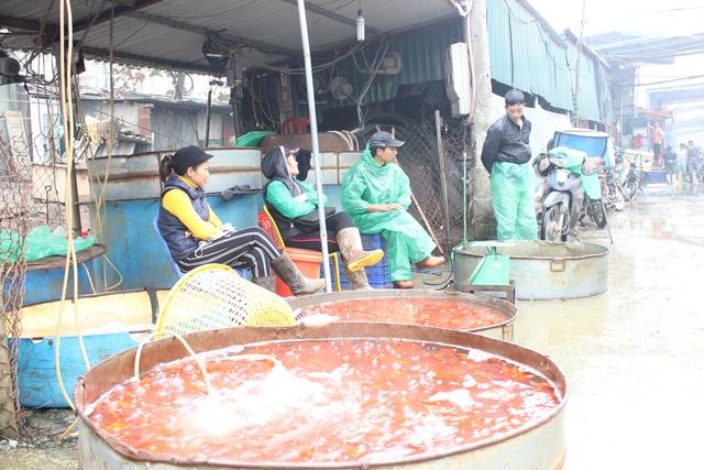 Theo các tiểu thương tại chợ này, năm nay hàng cá bán khá chạy. Giá cả cũng có chút nhỉnh hơn do 3 năm trước người dân nuôi bị lỗ nhiều, năm nay hàng ít hơn nên giá cả cũng vì thế mà đắt hơn.
