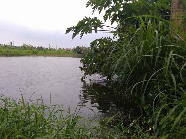 Hải Dương: Bàng hàng phát hiện 2 mẹ con tử vong dưới ao trước nhà