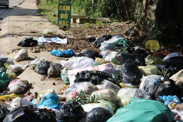 """Rác ngập ngụa ở những nơi có biển """"cấm đổ rác"""" tại thị trấn Hương Khê. Ảnh: LVV"""