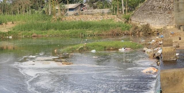 Suối Đập Tràn bị sủi bọt lạ khiến người dân lo ngại. Ảnh: H.Châu