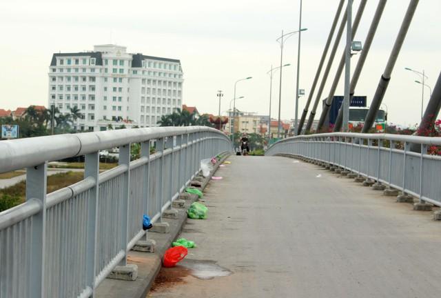 Khu vực cầu Rào 2 và một số ao hồ trên địa bàn thành phố Hải Phòng cũng chịu chung số phận.