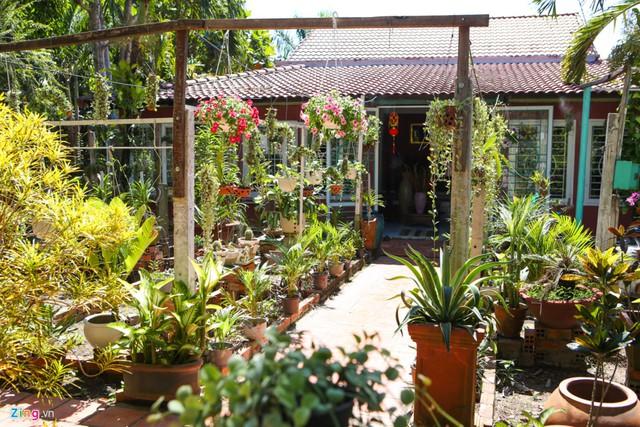 Một góc sân sau của ngôi nhà trồng rất nhiều cây cảnh, phong lan và các loại dây leo, tạo không gian thoáng đãng.