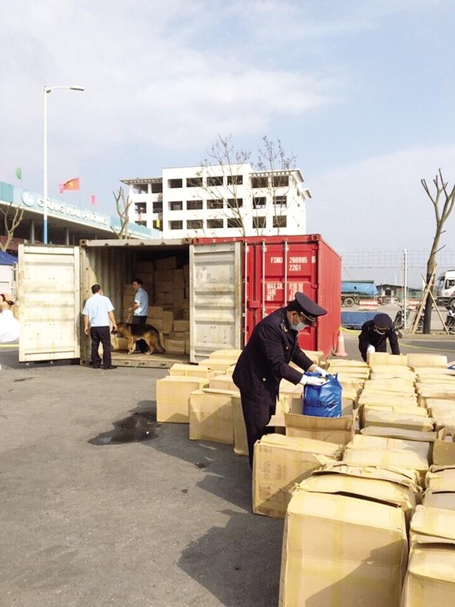 Kiểm tra những kiện hàng trong vụ vận chuyển 2,8 tấn lá Khat qua đường biển. Ảnh: T.L