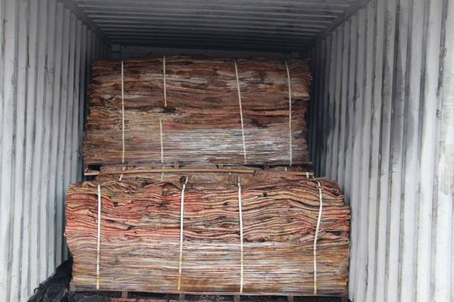 Container chứa hơn tấn cá ngựa nhập lậu tại cảng Nam Hải