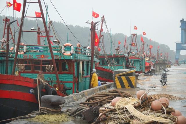Lực lượng BĐBP Nghệ An kêu gọi vào bờ trú bão an toàn 100% tàu thuyền.