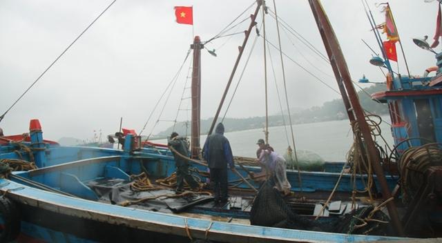 Tàu thuyền được ngư dân đưa vào cảng Cửa Lò (Nghệ An) tránh trú.