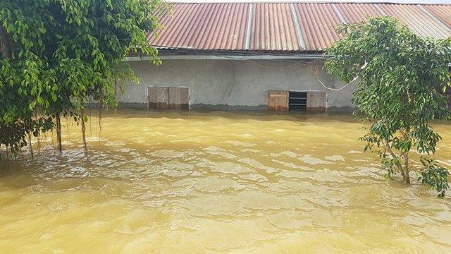 Nhiều ngôi nhà bị nước nhấn chìm