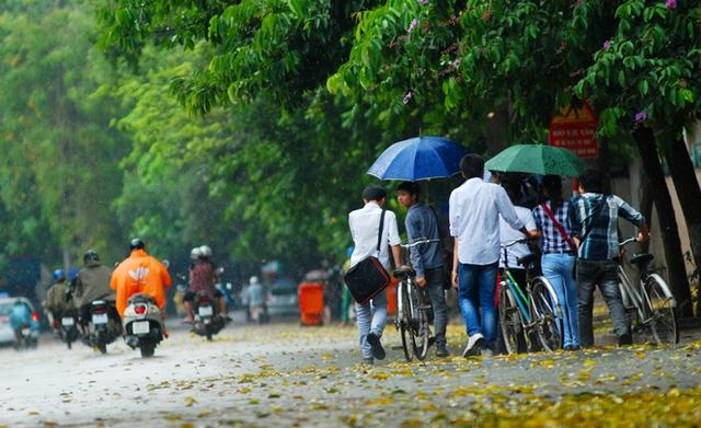 Không khí lạnh cuối mùa kéo nền nhiệt ở Hà Nội giảm gần 10oC, thời tiết mát mẻ, dễ chịu. Hình minh họa