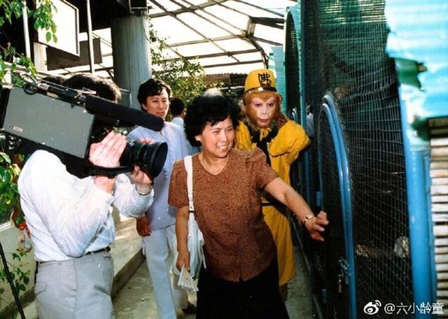 Lục Tiểu Linh Đồng đau xót khi nghe tin đạo diễn Dương Khiết qua đời. Ảnh: Weibo.
