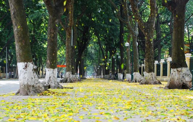 Thời tiết sẽ mát mẻ 2 ngày cuối tuần ở Hà Nội. Hình minh họa