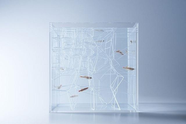 Bể cá thủy tinh với các chi tiết nhựa trừu tượng trang trí bên trong như một lâu đài thủy cung của loài cá.