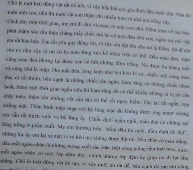 Bài văn tả con chó được cô giáo in cho học sinh thuộc lòng.